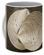 Seashells Spectacular No 11 Coffee Mug