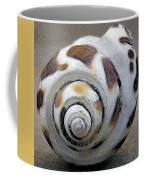 Seashells Spectacular No 2 Coffee Mug
