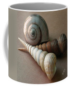 Seashells Spectacular No 29  Coffee Mug by Ben and Raisa Gertsberg