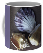 Seashells Spectacular No 30 Coffee Mug