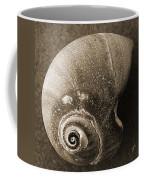 Seashells Spectacular No 31 Coffee Mug by Ben and Raisa Gertsberg