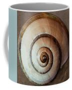Seashells Spectacular No 34 Coffee Mug