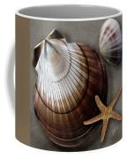 Seashells Spectacular No 38 Coffee Mug