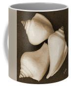 Seashells Spectacular No 4 Coffee Mug