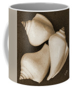 Seashells Spectacular No 4 Coffee Mug