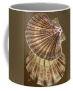Seashells Spectacular No 54 Coffee Mug