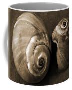 Seashells Spectacular No 6 Coffee Mug