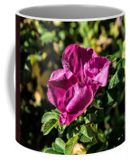 Seasons Last Rose Coffee Mug