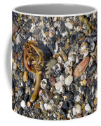Seaweed And Shells Coffee Mug