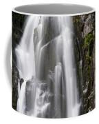 Section Of The Falls Coffee Mug