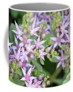 Sedum Closeup Coffee Mug