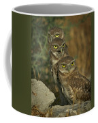 See No Evil - Hear No Evil - Speak No Evil Coffee Mug