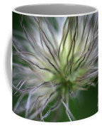 Seed Head Coffee Mug
