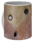 Seed In Rock Coffee Mug
