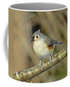 Seed On Tufted Titmouse Coffee Mug