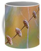 Seed Pod Pagoda Coffee Mug