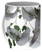 Seed Pods Coffee Mug