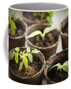 Seedlings  Coffee Mug