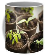 Seedlings  Coffee Mug by Elena Elisseeva