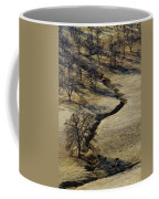 Seeking Shade Coffee Mug