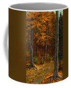 Seldom Used Coffee Mug