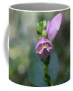 Selfheal Flower Coffee Mug