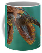 Sem Of Stable Fly Foot Coffee Mug