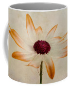 Senetti Pericallis Orange Tip Coffee Mug