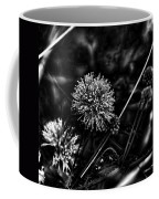 Sensitive Briar Schrankia Nuttalii  Coffee Mug