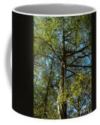 Sentinel 2 Coffee Mug
