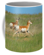 Separate Ways Coffee Mug