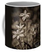 Sepia Dreams Coffee Mug