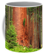 Sequoias Coffee Mug by Inge Johnsson