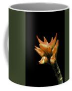 Serene - Unruffled Coffee Mug