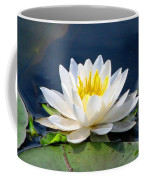 Serenity On The Lily Pond Coffee Mug