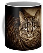 Serious Tabby Cat Coffee Mug