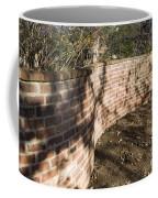 Serpentine Wall University Of Virginia Coffee Mug