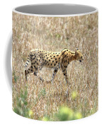 Serval Cat - Kenya Coffee Mug