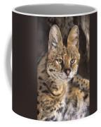 Serval Portrait Wildlife Rescue Coffee Mug