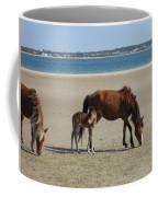 Shackleford Banks Foal Coffee Mug