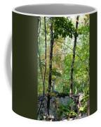 Shade Upon A Rock Coffee Mug