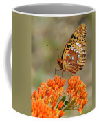 Shades Of Orange Coffee Mug