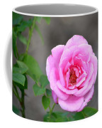 Shades Of Pink Coffee Mug