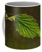 Shadows And Light Of The Leaf Coffee Mug