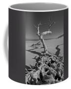 Shadows At Driftwood Beach Coffee Mug