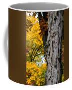 Shagbark Hickory Tree Coffee Mug