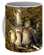 Shaggy Ink Caps - Coprinus Comatus Coffee Mug