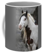 Shaman Portrait Coffee Mug