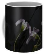 Shamrock Trinity Coffee Mug