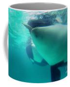Shamu Was  1965-1971 Orca Sea World California 1968 Coffee Mug
